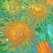 Sea Urchin 10 Art Print