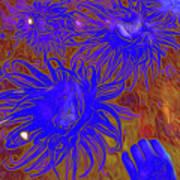 Sea Urchin 9 Art Print