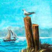 Seagull At Port Entrance Art Print