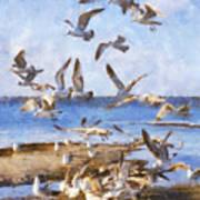 Seagull Convention Art Print