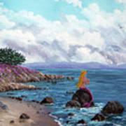 Seagull Cove Art Print