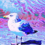 Cool And Colorful Gull Art Print