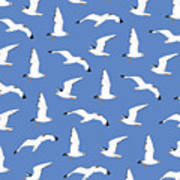 Seagulls Gathering At The Cricket Art Print