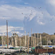 Seagulls Over Mylor Creek Boatyard Art Print