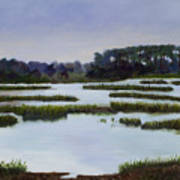 Searching Savannah Marsh By Marilyn Nolan- Johnson Art Print