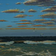 Seascape With Tearns Art Print