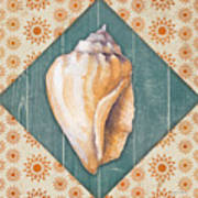 Seashells-jp3620 Art Print