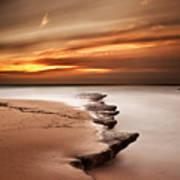 Seashore Wonders Art Print