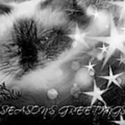 Seasons Greetings Bw Art Print
