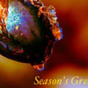 Season's Greetings- Iced Light Art Print