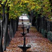 Seasons - Pathway Art Print