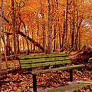 Seat To Autumn Art Print
