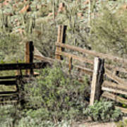 Secluded Historic Corral In Sonoran Desert Art Print