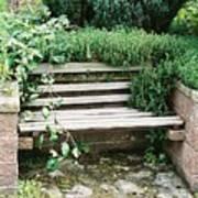Secret Garden Bench Art Print