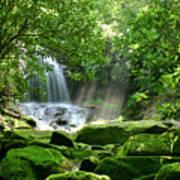 Secret Paradise - Hidden Appalachian Waterfall Art Print by Matt Tilghman