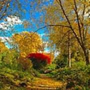 Secret Path At Lafayette Park Landscape Art Print