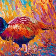 Secrets In The Grass - Pheasant Art Print