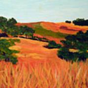 Sedgewick Reserve Art Print