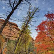 Sedona Fall Colors Art Print