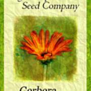 Seed Packet -- Gerbera Daisies Art Print