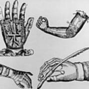 Selection Of 16th Century Artificial Arms & Hands. Art Print by Dr Jeremy Burgess.