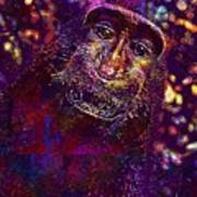 Selfie Monkey Self Portrait  Art Print