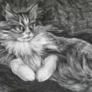 Semona Art Print