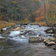 Seneca Creek Autumn Art Print
