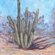 Senita Cactus Art Print