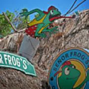 Senor Frog's - Playa Del Carmen Art Print