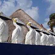 Sentry Pelicans Art Print