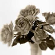 Sepia Roses Art Print