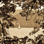 Sepia Sailboat Art Print