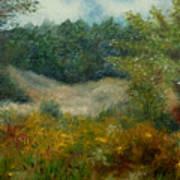 September In Hyde Park Art Print