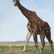 Serengeti Longneck Art Print