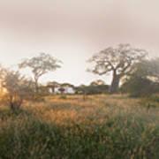 Serengeti Sunrise Art Print
