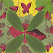 Serenity The Transcendence Into Autumn Art Print