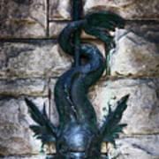 Serpent Fountain Art Print by Doug Sturgess