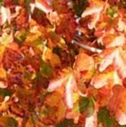Seurat-like Fall Leaves Art Print