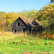 Shack In Fall Colours Art Print