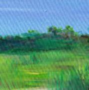 Shaded Meadow Art Print