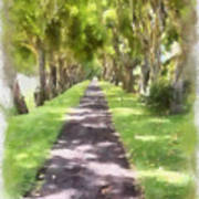 Shaded Walkway To Princeville Market Art Print