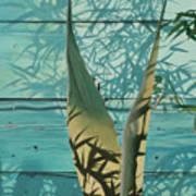 Shadowed Agave Art Print