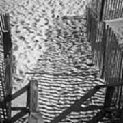 Shadows In The Sand Art Print