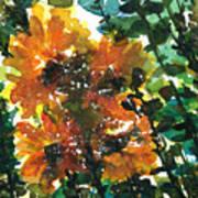 Shadows Of Sunflowers Art Print