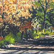 Shady Lane Art Print