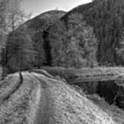 Shady Trail Tonemapped Art Print