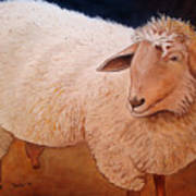 Shaggy Sheep Art Print