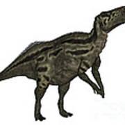 Shantungosaurus Dinosaur Art Print