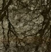 Shattered Forest Art Print